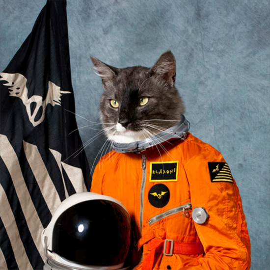 This is the winning entry of the Art Vinyl Best Album cover by the Klaxons.